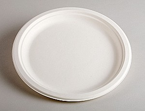 "Classic Sugarcane Dinner Plate 10"" (125pk)"